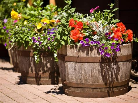 flowers in pots ideas flower pot garden ideas flower idea flower pot vegetable garden ideas springtime flower pot