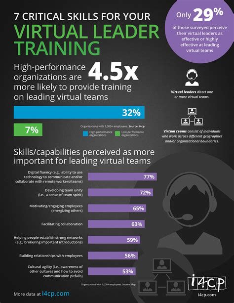 infographic  critical skills   virtual leader