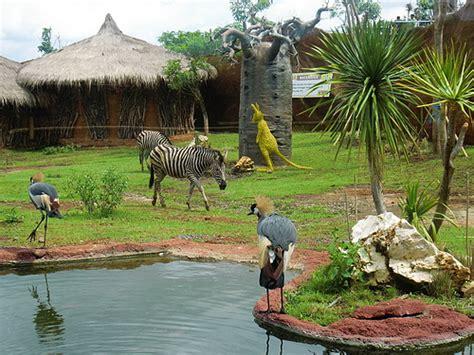 wisata batu secret zoo malang suzantovic
