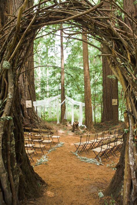 romance   redwoods  forest wedding