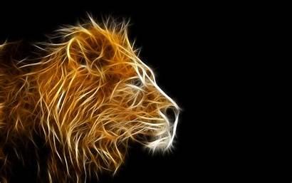 Animal Animated Lion Nadyn источник Biz