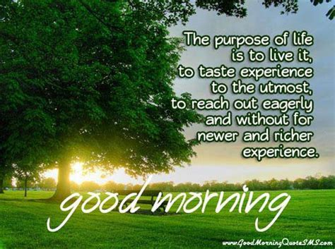 Morning Wishes For Positive Energy Motivational Morning Inspiring Poems Which Fills You Positive