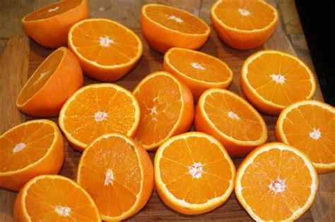Orange Cream In Orange Cups With The Best Homemade Hot Watermelon Wallpaper Rainbow Find Free HD for Desktop [freshlhys.tk]