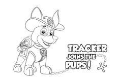 las  mejores imagenes de paw patrol patrulla canina  colorear en  paginas