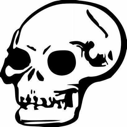 Skull Clipart Death Transparent Horror Webstockreview