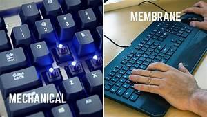 Beginner U0026 39 S Guide  The Best Mechanical Keyboard For You