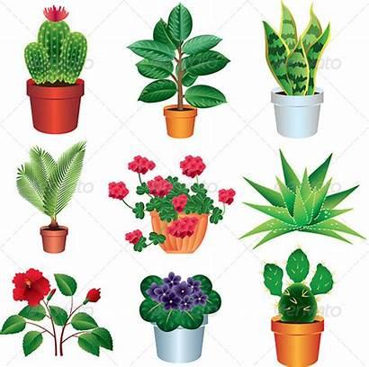 Plants Clipart Vector Garden Bushes Shrub Cactus