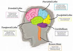 Bedside Brain Imaging