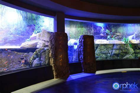 led l china projet d 233 clairage led d aquarium public de chengdu