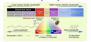 6 P 1 2 Ems  U0026 Light