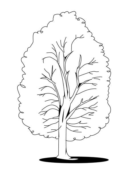 tree coloring pages  kids updated