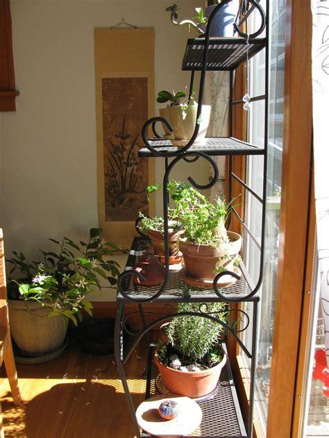 Indoor Window Garden by 16 Best Images About Indoor Gardening On