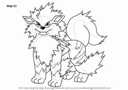Arcanine Pokemon Draw Drawing Step Tutorials Anime