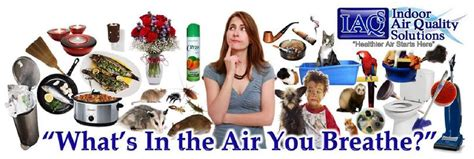 florida indoor air quality allergen asthma trigger