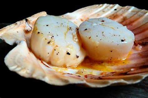 cuisine coquilles jacques recette de noix de jacques du marin