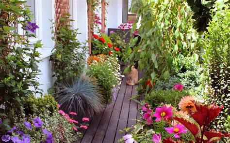 Japanischer Garten Auf Dem Balkon by Blumen F 252 R Balkon Und Garten Blumen Dekoration Ideen