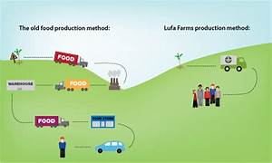 Lufa Farms Simplified Distribution  U00ab Inhabitat  U2013 Green