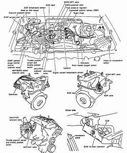 2010 Nissan Frontier Engine Diagram