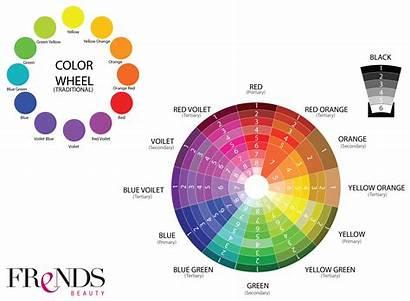 Wheel Theory Makeup Eyeshadow Circle Colors Matching