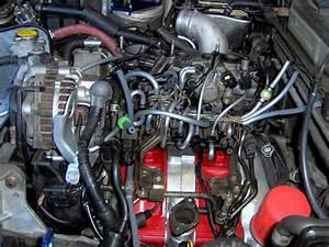 50cc Engine Vacuum Lines Diagram