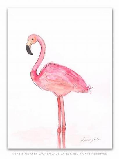 Flamingo Watercolor Painting Flamingos Miami Bird Thestudio
