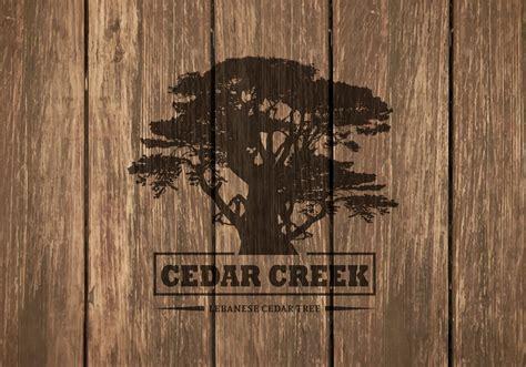 cedar tree silhouette  wooden background