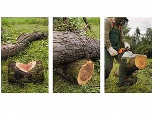 Chevalet Coupe Bois : entaille du bois ~ Premium-room.com Idées de Décoration
