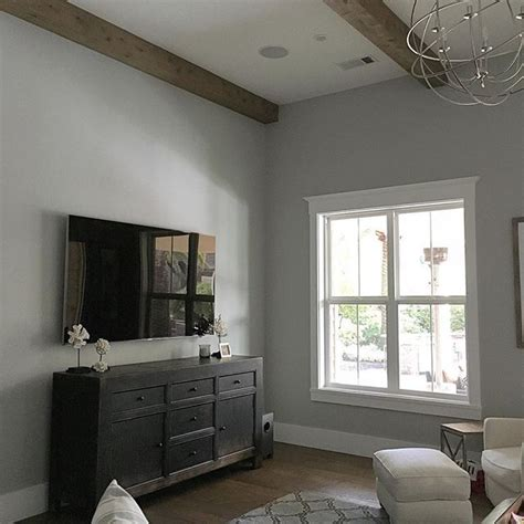 behr dolphin fin paint colors   living room
