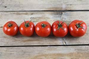 Tomaten Wann Pflanzen : tomatenvlies zuverl ssiger schutz vor regenschauern ~ Frokenaadalensverden.com Haus und Dekorationen