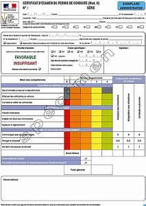 Nombre Points Permis : certificat d examen groupe maurice conduite ~ Medecine-chirurgie-esthetiques.com Avis de Voitures