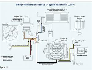 Fitech Wiring W  Cdi Box And Petronix Distributor