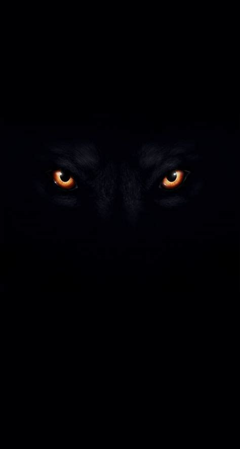 Iphone Black Wolf Wallpaper by Wolf Picture With Black Background Black And White Wolf