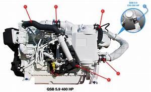 Qsb 5 9 Engine Hoses