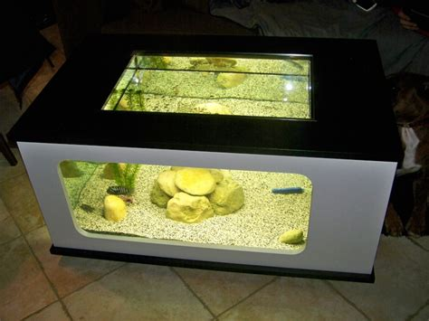 aquarium d occasion le bon coin le bon coin table basse aquarium ezooq
