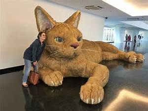 The world's biggest cat. Designed to be touched. It even ...