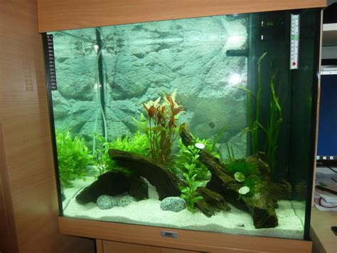 aquarium juwel 200 litres hi i just set up a juwel lido 120 litre tank i set up the tank my aquarium club