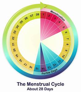 A Girls U0026 39  Guide To Optimizing Performance With The Flow Of Her Menstrual Cycle