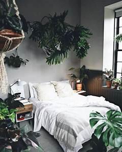 The 25+ best Bedroom plants ideas on Pinterest Plants in
