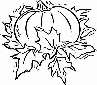 Pumpkin Coloring Patch Pages Pumpkins Scary Haunted