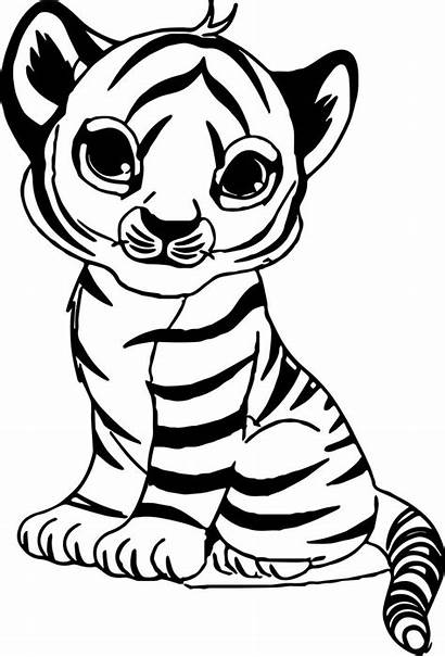 Coloring Pages Tiger Animal Tigers Unicorn