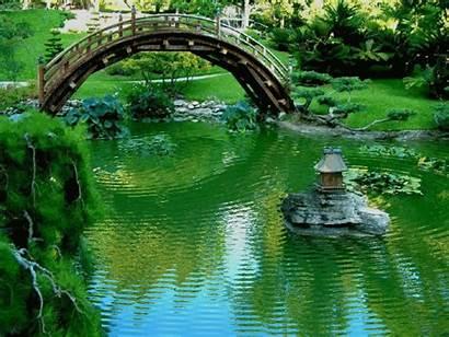 Garden Japanese Asian Zen