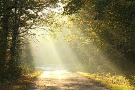 light on the path true life with god jesus still resurrects