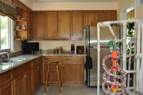 floor cabinets for kitchen kitchen remodel doityourself 7242