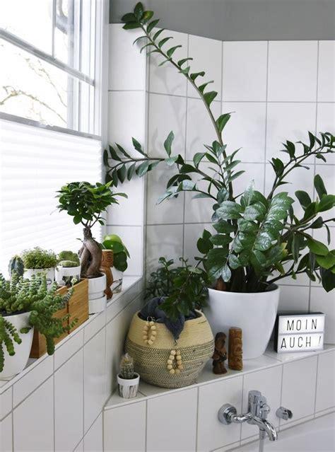 Licht Für Den Urban Jungle Im Bad  Kleines Badezimmer