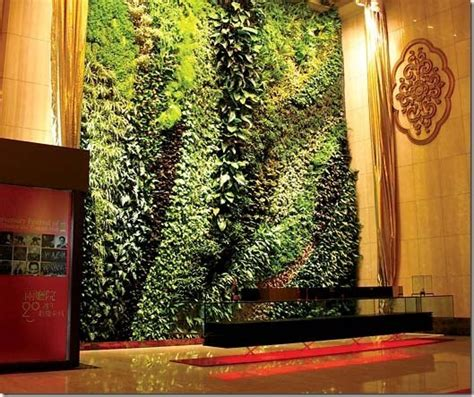 living walls and vertical gardens living