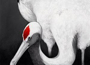 Red-crowned Crane by Artisticaviary on DeviantArt