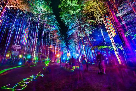 breaking electric forest   sold    hours