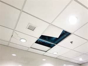 Tactics for Cleaning Ceiling Tiles