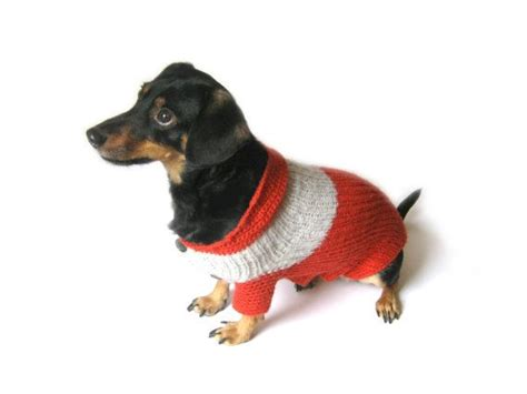 25+ best ideas about Dachshund sweater on Pinterest | Dog hoodie Dachshund shirt and Wiener dogs