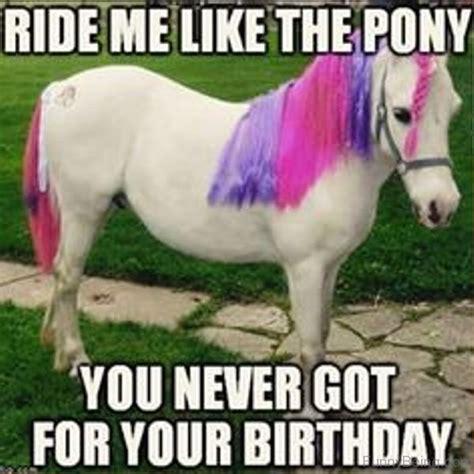 Funny Pony Memes - 83 foolish horse memes